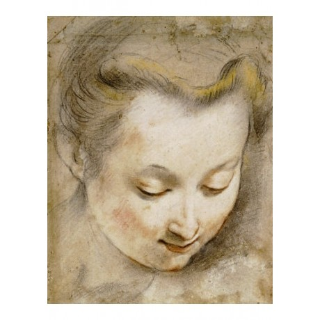FEDERICO BAROCCI print woman study portrait PRINT choose SIZE, from 55cm up, NEW