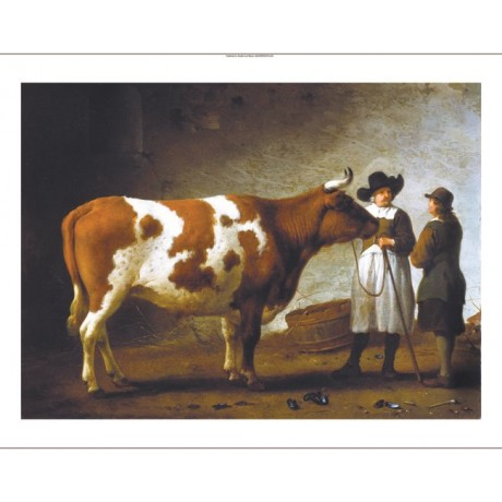 "CALRAET ABRAHAM ""Butcher With A Bull"" new CANVAS print! various SIZES, BRAND NEW"