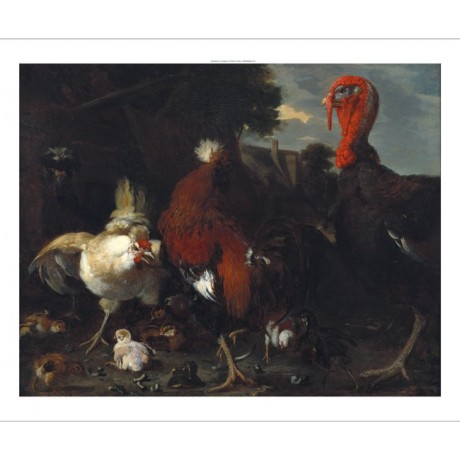 "MELCHIOR DE HONDECOETER ""Hen Rooster And Turkey"" CANVAS various SIZES, BRAND NEW"