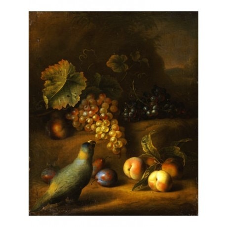 TOBIAS STRANOVER Fruit Still Life PRINT ON CANVAS NEW various SIZES, BRAND NEW