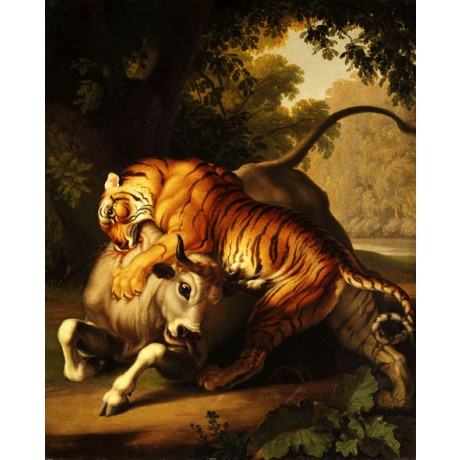 "WENZEL PETER ""A Tiger attacking a Bull"" BLOODY fierce food chain CANVAS PRINT"