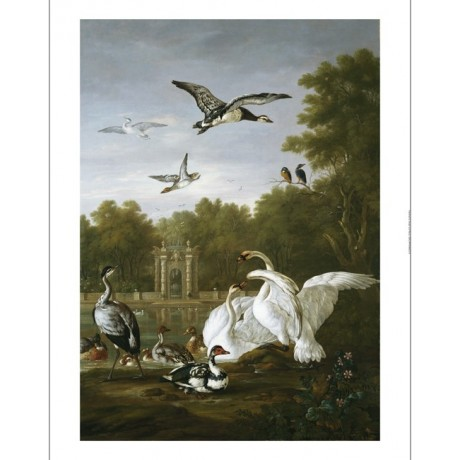 """PIETER CASTEELS """"Swans, Ducks And Other Birds"""" CANVAS! various SIZES, BRAND NEW"""