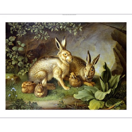 JOHANN WENZEL PETER Hares And Leverets PRINT NEW choose SIZE, from 55cm up, NEW