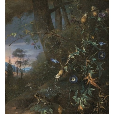 "MATTHIAS WITHOOS ""Forest floor still life"" FROG mushroom mountains blue CANVAS"