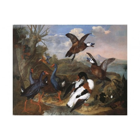 "FERDINAND PHILIPP DE HAMILTON ""Shell Ducks And Fowl"" various SIZES available"
