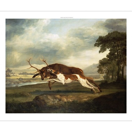 "GEORGE STUBBS ""A Hound Attacking A Stag"" SEE OUR SHOP! various SIZES, BRAND NEW"
