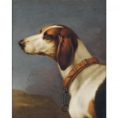 "CIRCLE OF JOHN WOOTTON ""Head of a Hound"" dog CANVAS various SIZES available, NEW"