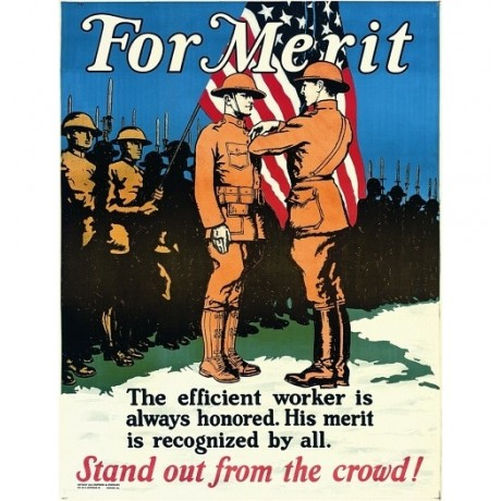 For Merit, Stand Out From the Crowd US army war choose SIZE, from 55cm up, NEW