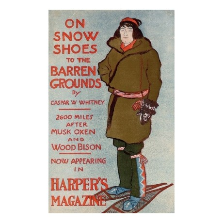 "EDWARD PENFIELD ""Harper's Magazine Snow Shoes"" CANVAS various SIZES, BRAND NEW"