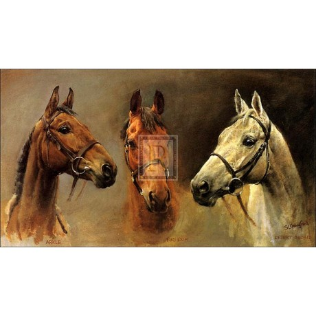 CRAWFORD We Three Kings red rum desert orchid arkle! SIZE:30cm x 40cm NEW print