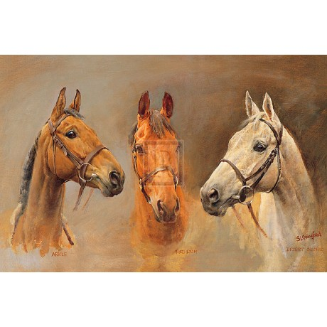 """CRAWFORD """"We Three Kings"""" arkle desert orchid red rum! SIZE:60cm x 90cm NEW"""