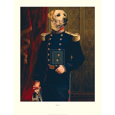 "THIERRY PONCELET ""Top Brass"" dog military uniform PRINT SIZE:86cm x 66cm NEW"